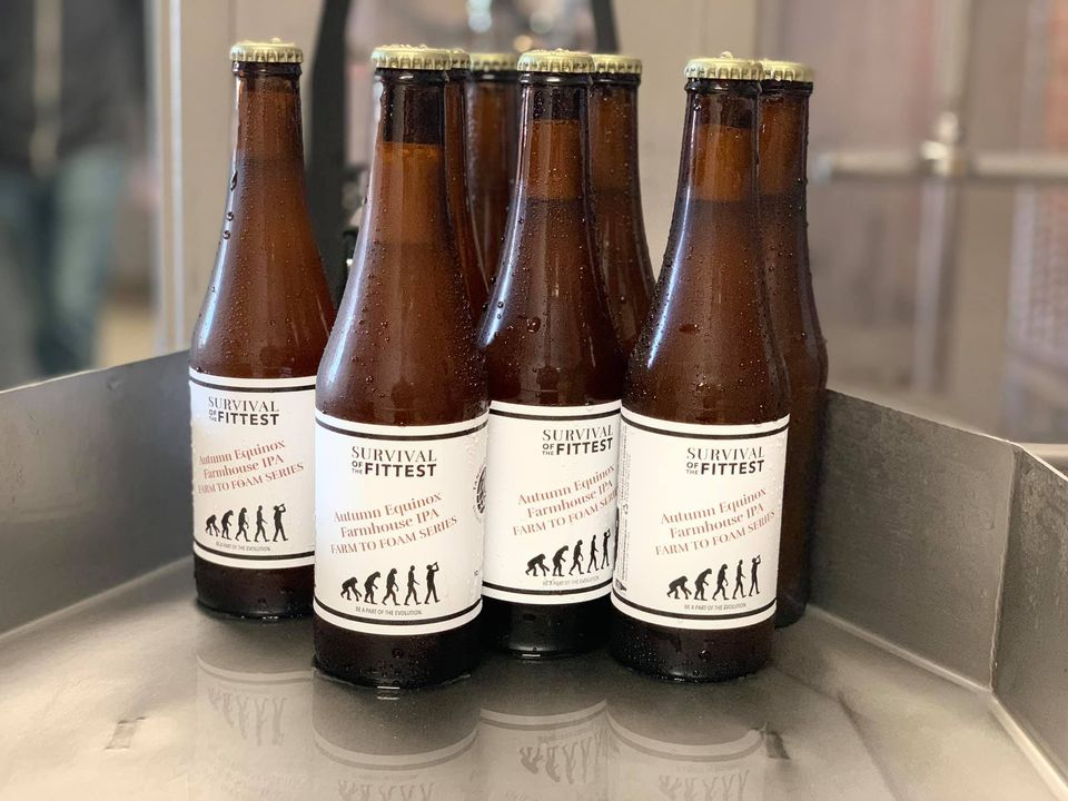 Seven bottles of Autumn Equinox from Tangled Roots Brewing Company