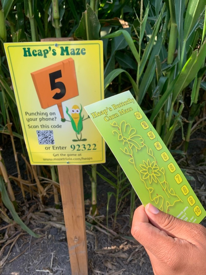 Heap's corn maze checkpoint with map