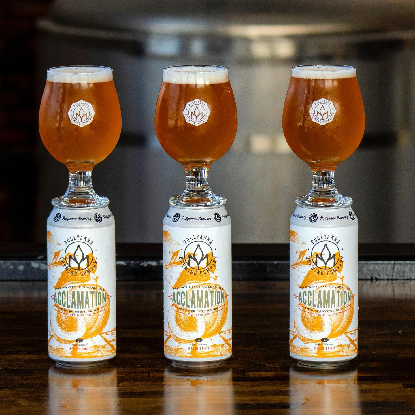 Three glasses of beer, each on top of their own can (Pollyanna Brewing)