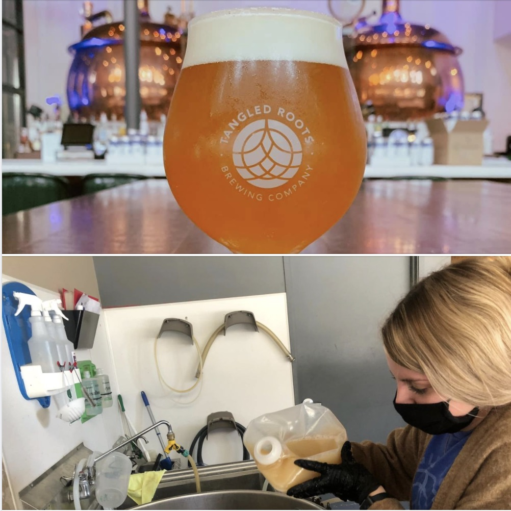 Split photo - top, beer on bar in front of copper brewing vessel, bottom, lady adding extract to a beer brew