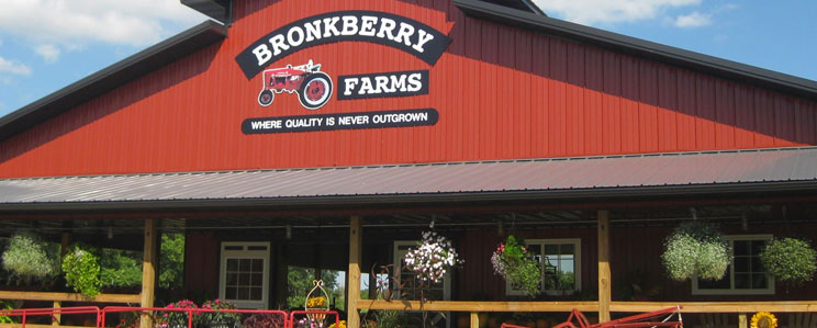 Bronkberry Farms